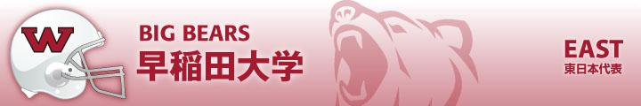 東日本代表・早稲田大学ビッグベアーズ